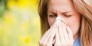 Tips for Surviving Allergies
